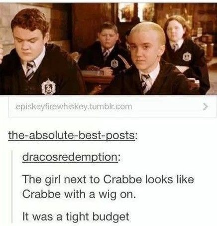 Harry Potter meme about the extras in the movies being the main cast wearing wigs