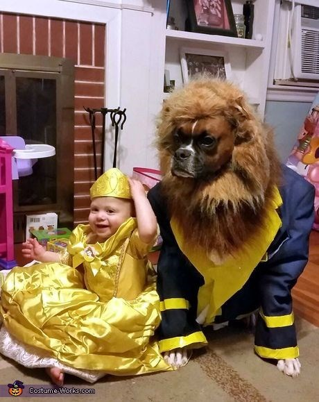 Dog - Costume-Works.com