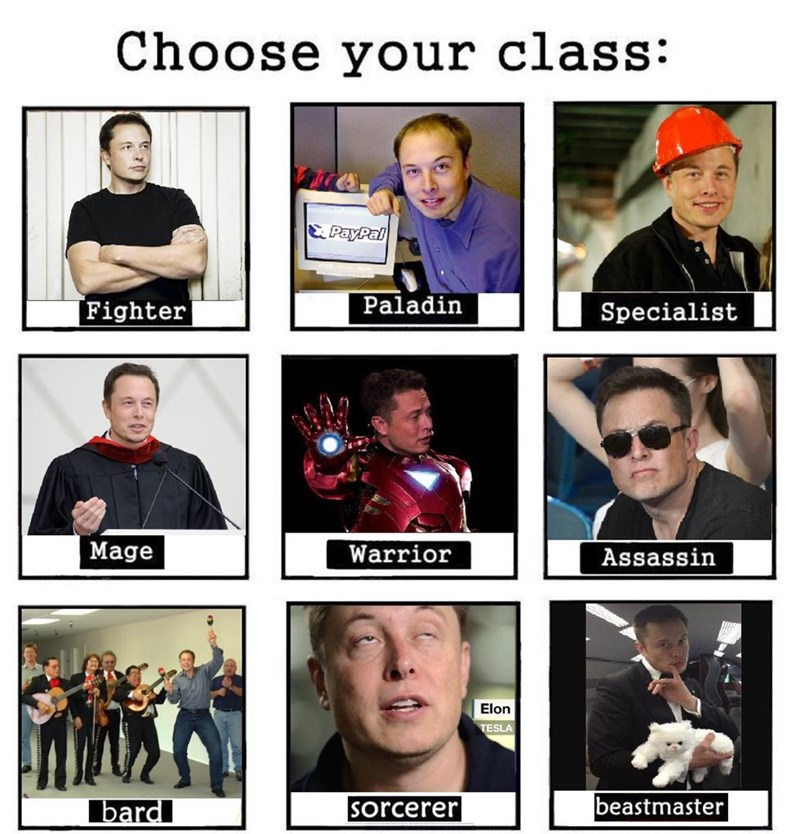 Facial expression - Choose your class: & PayPal Paladin Fighter Specialist Mage Warrior Assassin Elon TESLA beastmaster bard sorcerer