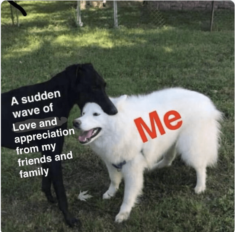 happy meme about feeling loved by your close ones with picture of dog happily munching another dog's head