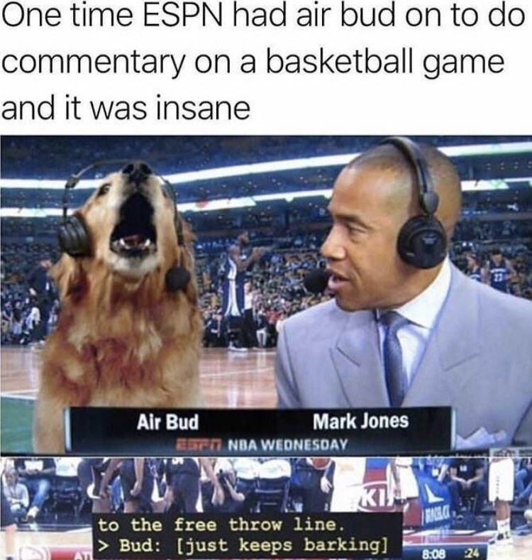 happy meme about dog commentating basketball game