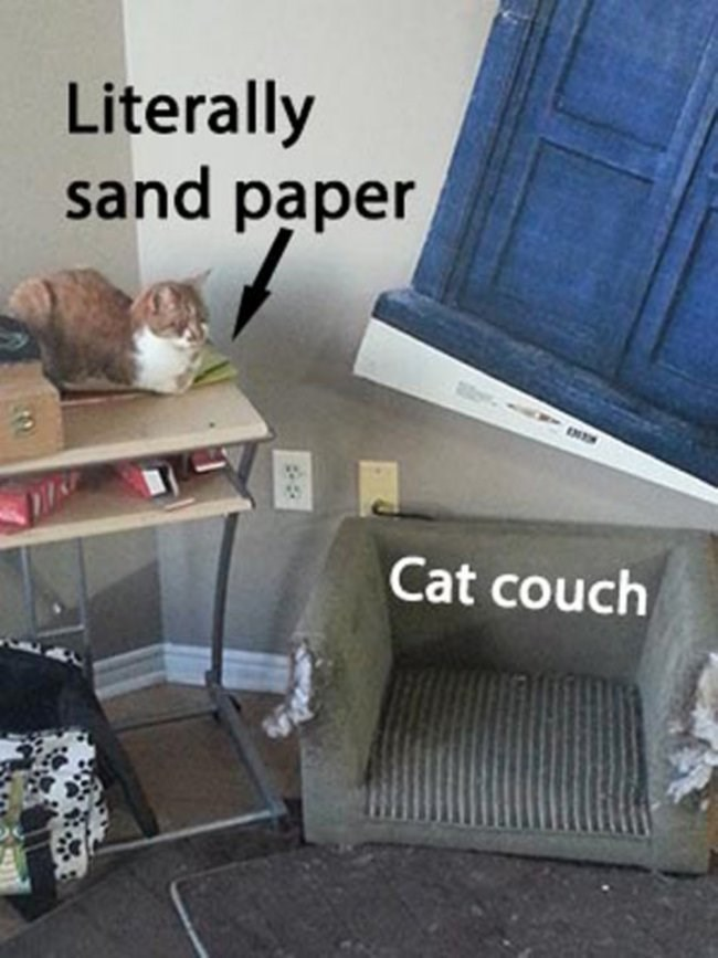 Pic of a cat lying on top of sandpaper next to its cat couch