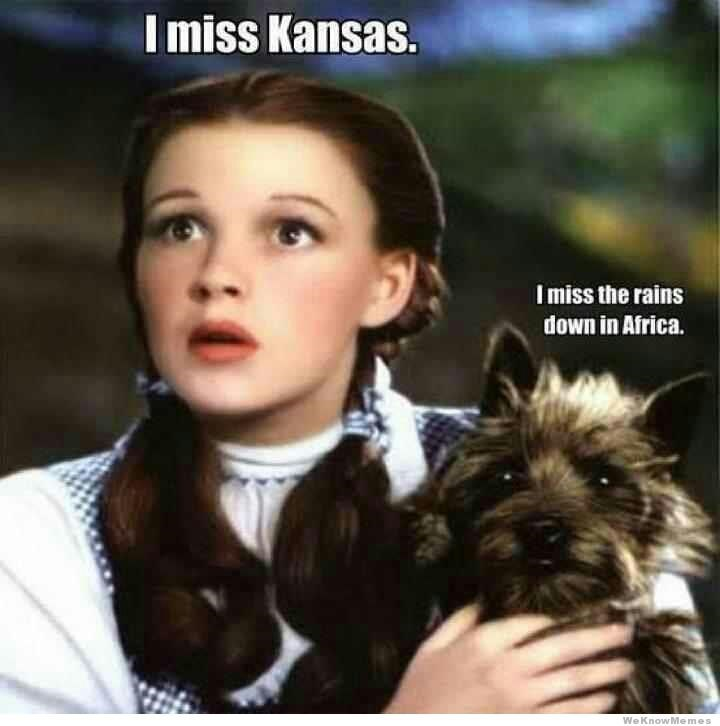 rains down in Africa Dorothy meme