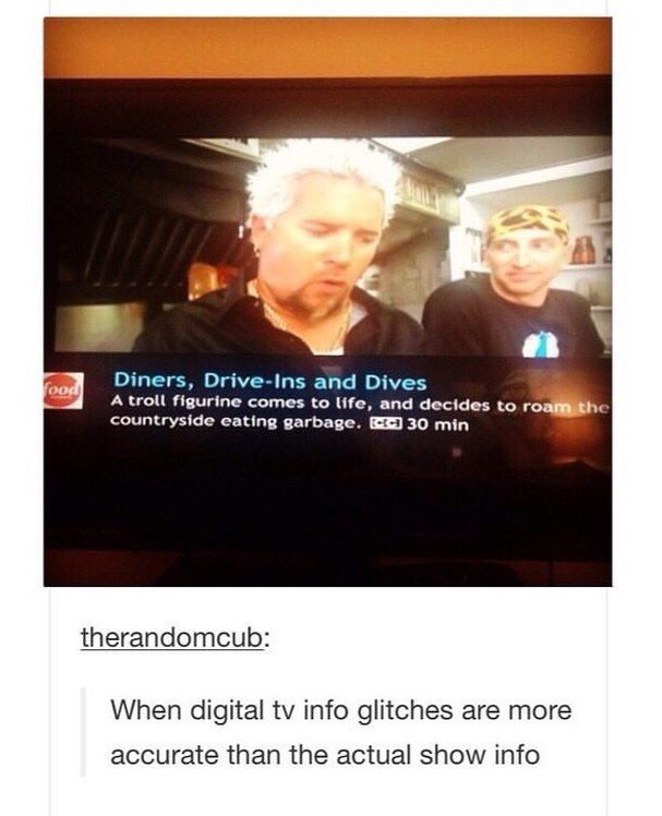 funny meme of a digital tv glitch that shows more accurate info of Guy Fieri