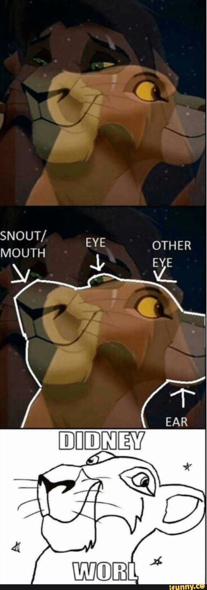 Meme of a funny mix of screen in Lion King Didney Worl