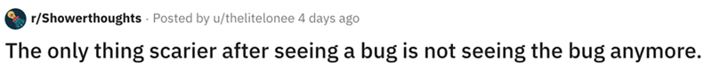 Text - r/Showerthoughts Posted by u/thelitelonee 4 days ago The only thing scarier after seeing a bug is not seeing the bug anymore.