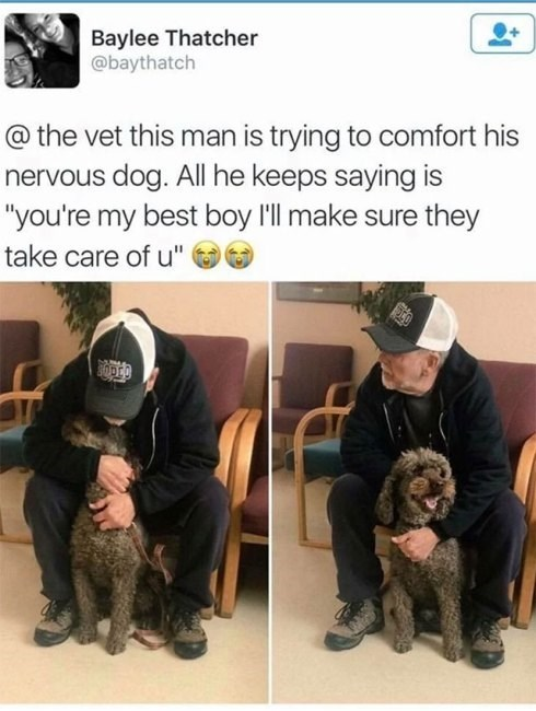 """Vertebrate - Baylee Thatcher @baythatch @ the vet this man is trying to comfort his nervous dog. All he keeps saying is """"you're my best boy 'll make sure they take care of u"""""""