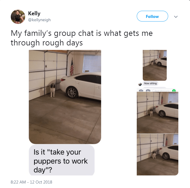 "Vehicle door - Kelly @kellyneigh Follow My family's group chat is what gets me through rough days Now sitting ovt Meseano Is it ""take your puppers to work day""? 8:22 AM -12 Oct 2018"