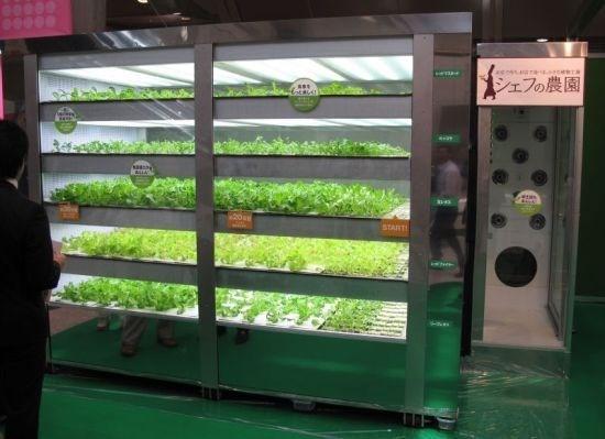 Machine - シェフの農園 START
