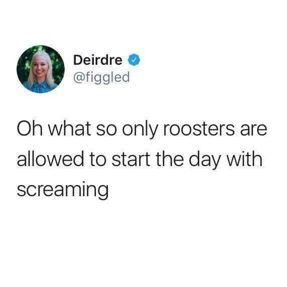 humpday meme about screaming in the morning