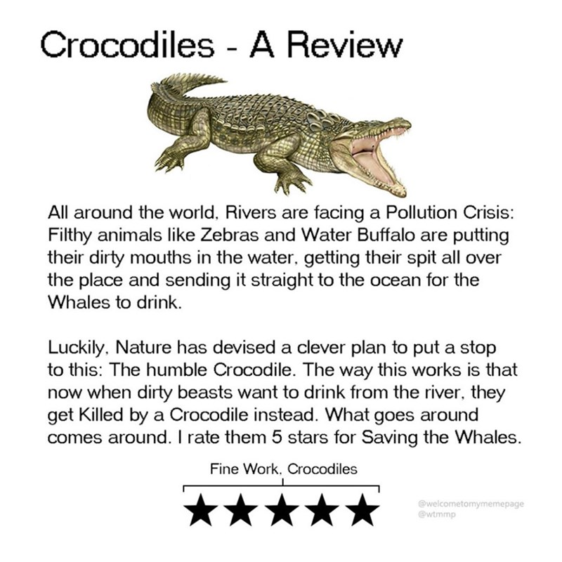 Text - Crocodiles A Review facing a Pollution Crisis: putting their dirty mouths in the water, getting their spit all over the place and sending it straight to the ocean for the All around the world, Rivers are Filthy animals like Zebras and Water Buffalo are Whales to drink. Luckily, Nature has devised a clever plan to put a stop to this: The humble Crocodile. The way this works is that now when dirty beasts want to drink from the river, they get Killed by a Crocodile instead. What goes around