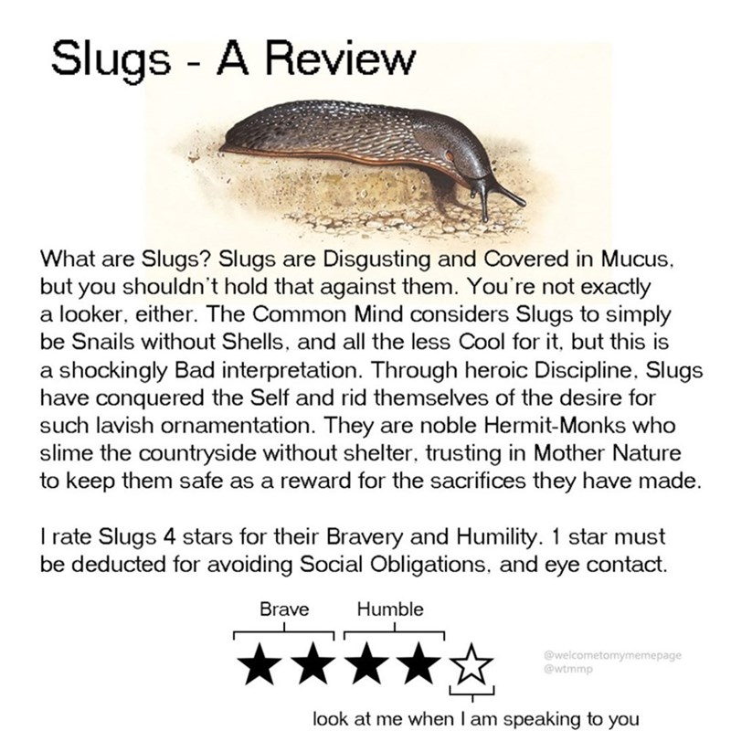 Text - Slugs - A Review Slugs? Slugs are Disgusting and Covered in Mucus, but you shouldn't hold that against them. You're not exactly a looker, either. The Common Mind considers Slugs to simply be Snails without Shells, and all the less Cool for it, but this is What are a shockingly Bad interpretation. Through heroic Discipline, Slugs have conquered the Self and rid themselves of the desire for such lavish ornamentation. They slime the countryside without shelter, trusting in Mother Nature to k