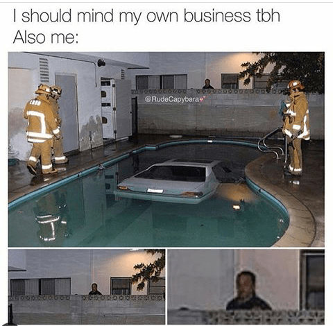 funny meme of saying you should mind your own business and also of a car in a neighbors pool and a neighbor poking his head above the fence to check out what is going on