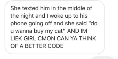 """Text - She texted him in the middle of the night and I woke up to his phone going off and she said """"do u wanna buy my cat"""" AND IM LIEK GIRL CMON CAN YA THINK OF A BETTER CODE"""