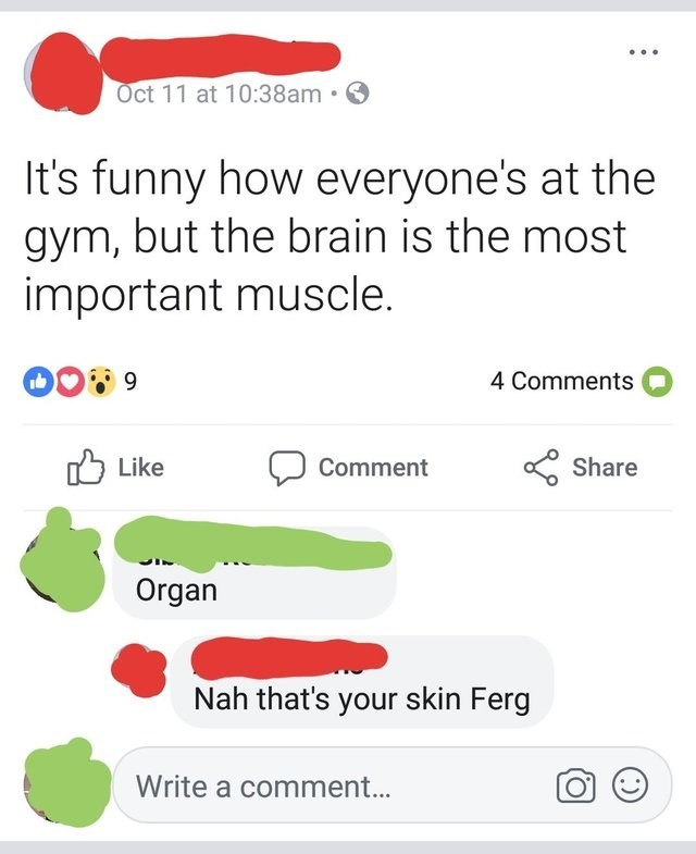 Text - Oct 11 at 10:38am. It's funny how everyone's at the gym, but the brain is the most important muscle. 4 Comments CShare Like Comment Organ Nah that's your skin Ferg Write a comment...