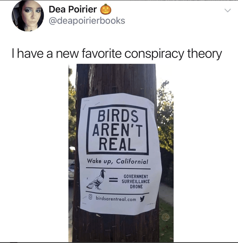 funny meme - Text - Dea Poirier @deapoirierbooks Ihave a new favorite conspiracy theory BIRDS AREN'T REAL Wake up, California! GOVERNMENT SURVEILLANCE DRONE O birdsarentreal.com