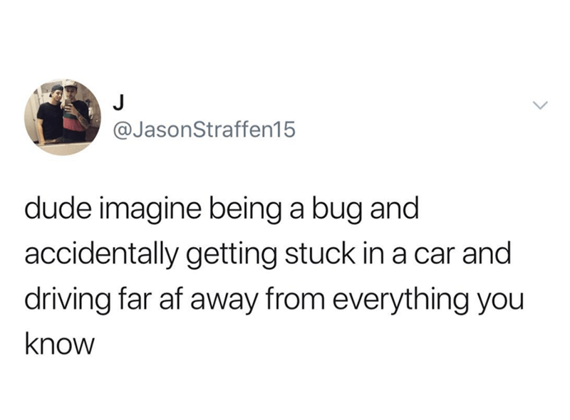 funny meme - Text - J @JasonStraffen15 dude imagine being a bug and accidentally getting stuck in a car and driving far af away from everything you know