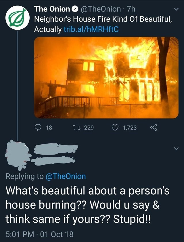 Text - The Onion ONeighbor's House Fire Kind Of Beautiful, Actually trib.al/hM RH ftC @TheOnion 7h 11 229 18 1,723 Replying to @TheOnion What's beautiful about a person's house burning?? Would u say & think same if yours?? Stupid!! 5:01 PM 01 Oct 18