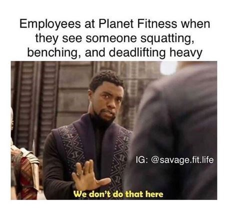 """Caption that reads, """"Employees at Planet Fitness when they see someone squatting, benching and deadlifting heavy"""" above a meme of T'challa from Black Panther saying, """"We don't do that here"""""""