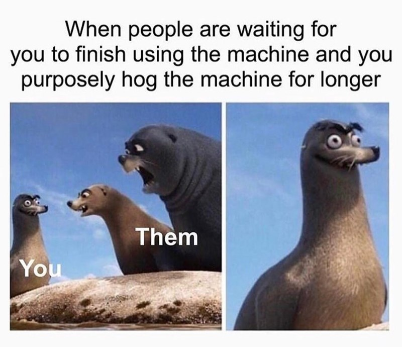 meme about hogging machines at the gym with pics of the seals from Finding Dory