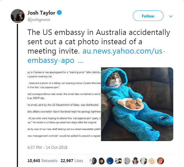 """Text - Josh Taylor Follow @joshgnosis The US embassy in Australia accidentally sent out a cat photo instead of a meeting invite. au.news.yahoo.com/us- embassy-apo.. sy in Canberra has apologised for a 'training error after distribu apyjama-wearing cat. , featured a photo of a tabby cat wearing a blue Cookie Monste th the title """"cat pajama-jam ted correspondence last week, the email also contained a sectic it an RSVP tab he email, sent by the US Department of State, was distributed blic affairs c"""