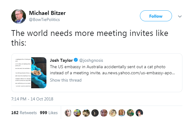 Text - Michael Bitzer Follow @BowTiePolitics The world needs more meeting invites like this: Josh Taylor@joshgnosis g The US embassy in Australia accidentally sent out a cat photo instead of a meeting invite. au.news.yahoo.com/us-embassy-apo.. w S Show this thread 7:14 PM - 14 Oct 2018 162 Retweets 999 Likes