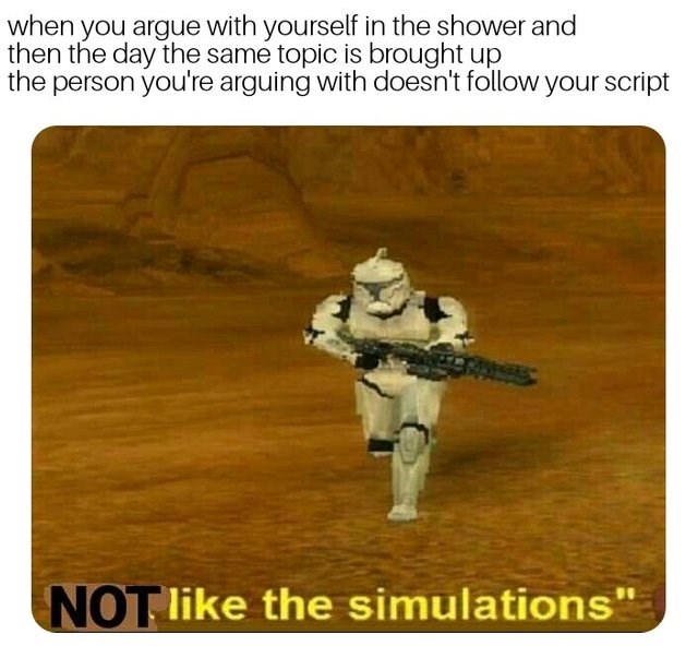 not like the simulation dank meme of arguments you won in the shower