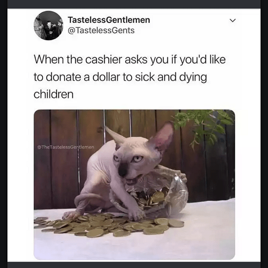 cat with no hair meme about when cashier asks if you like to donate a dollar for sick kids