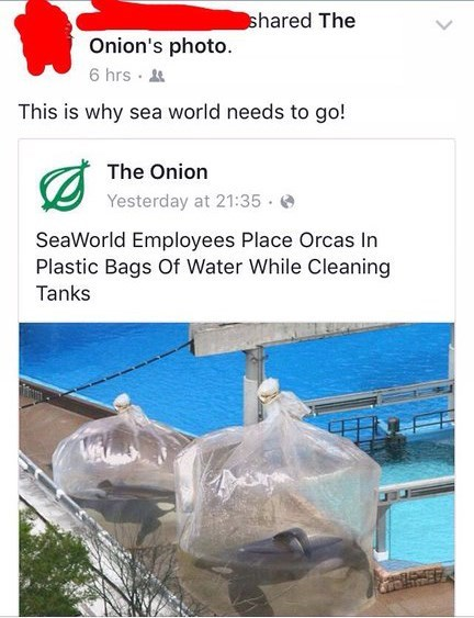 Water - shared The Onion's photo. 6 hrs This is why sea world needs to go! The Onion Yesterday at 21:35. SeaWorld Employees Place Orcas In Plastic Bags Of Water While Cleaning Tanks