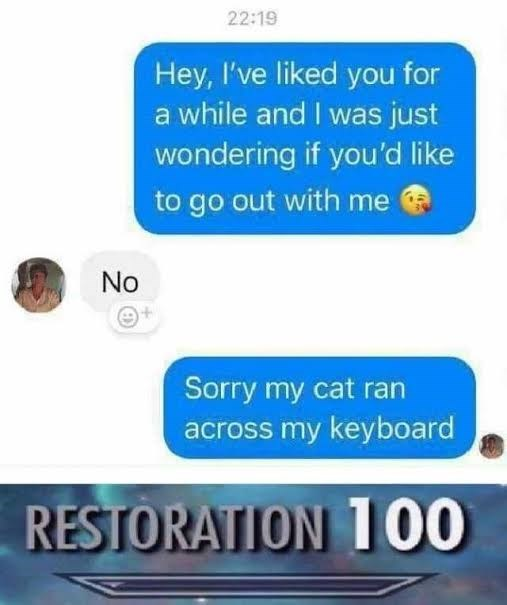 Funny meme about asking a girl out and then saying cat ran across keyboard.