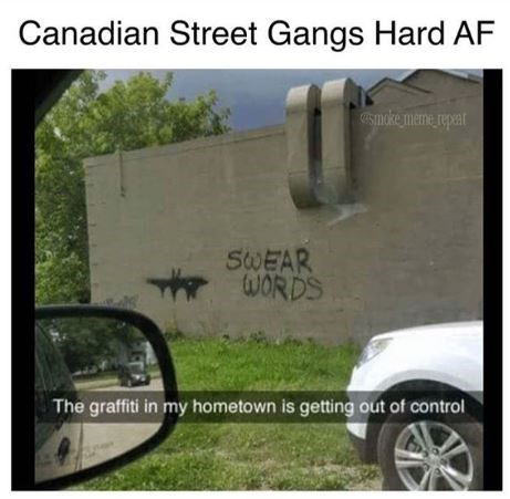 "Caption that reads, ""Canadian street gangs hard AF"" above a pic of graffiti that says ""Swear words"""