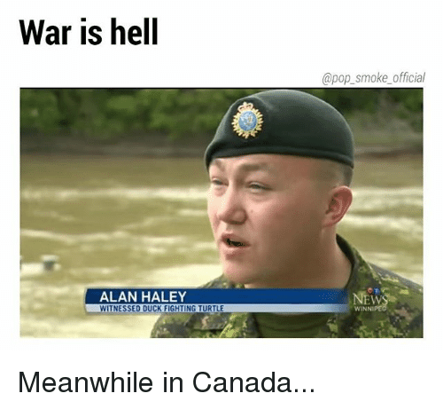 Photo caption - War is hell @pop_smoke_official ALAN HALEY WITNESSED DUCK FIGHTING TURTLE NEWS WINNIPE Meanwhile in Canada...