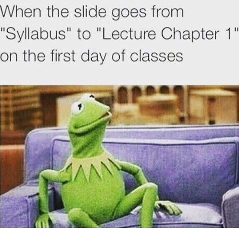 """Caption that reads, """"When the slide goes from 'syllabus' to 'lecture chapter 1' on the first day of class"""" above a pic of a stressed-out Kermit the Frog"""
