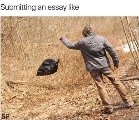 Adaptation - Submitting an essay like SP