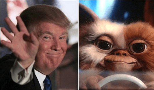 trump look alikes - Animated cartoon