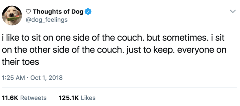 Text - Thoughts of Dog @dog_feelings i like to sit on one side of the couch. but sometimes. i sit on the other side of the couch. just to keep. everyone on their toes 1:25 AM Oct 1, 2018 11.6K Retweets 125.1K Likes