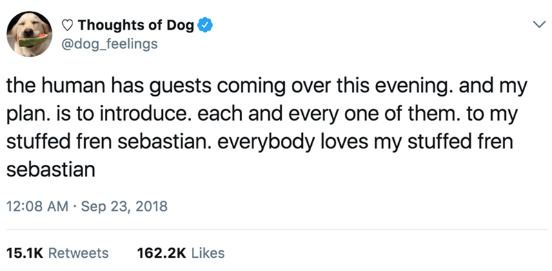Text - Thoughts of Dog @dog_feelings the human has guests coming over this evening. and my plan. is to introduce. each and every one of them. to my stuffed fren sebastian. everybody loves my stuffed fren sebastian 12:08 AM Sep 23, 2018 15.1K Retweets 162.2K Likes