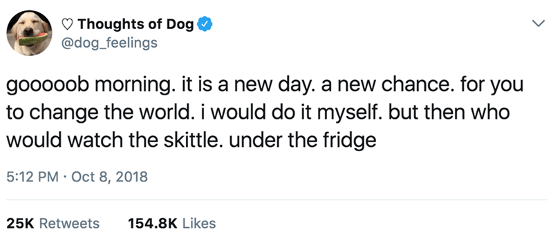 Text - Thoughts of Dog @dog_feelings gooooob morning. it is a new day. a new chance. for you to change the world. i would do it myself. but then who would watch the skittle. under the fridge 5:12 PM Oct 8, 2018 154.8K Likes 25K Retweets