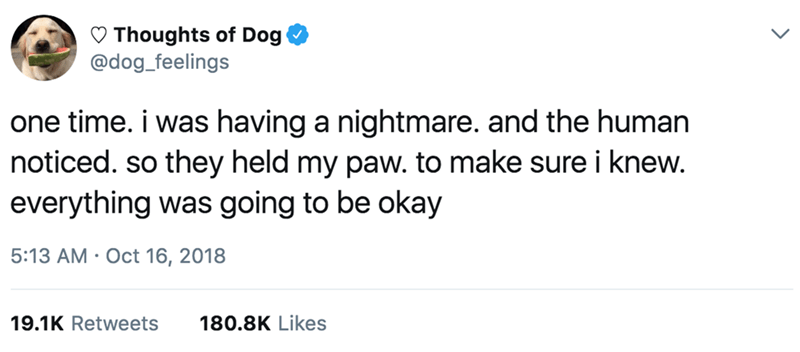 Text - Thoughts of Dog @dog_feelings one time. i was having a nightmare. and the human noticed. so they held my paw. to make sure i knew. everything was going to be okay 5:13 AM Oct 16, 2018 19.1K Retweets 180.8K Likes
