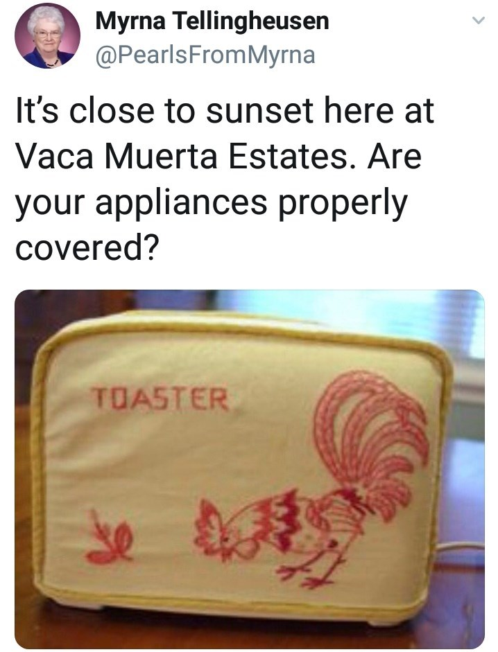 Text - Myrna Tellingheusen @PearlsFromMyrna It's close to sunset here at Vaca Muerta Estates. Are your appliances properly covered? TOASTER