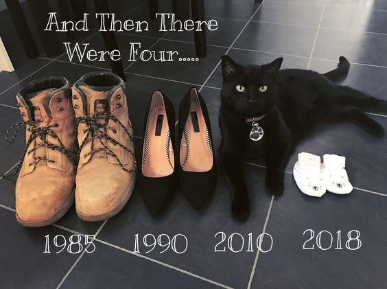 Footwear - And Then There Were Four. O0000 1985 1990 2010 2018