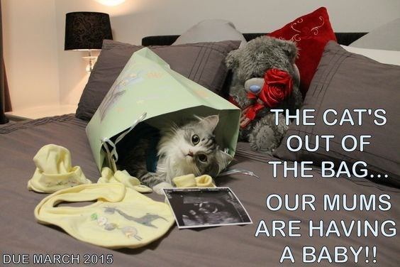 Photo caption - THE CAT'S OUT OF THE BAG. OUR MUMS ARE HAVING A BABY!! DUE MARCH 2015
