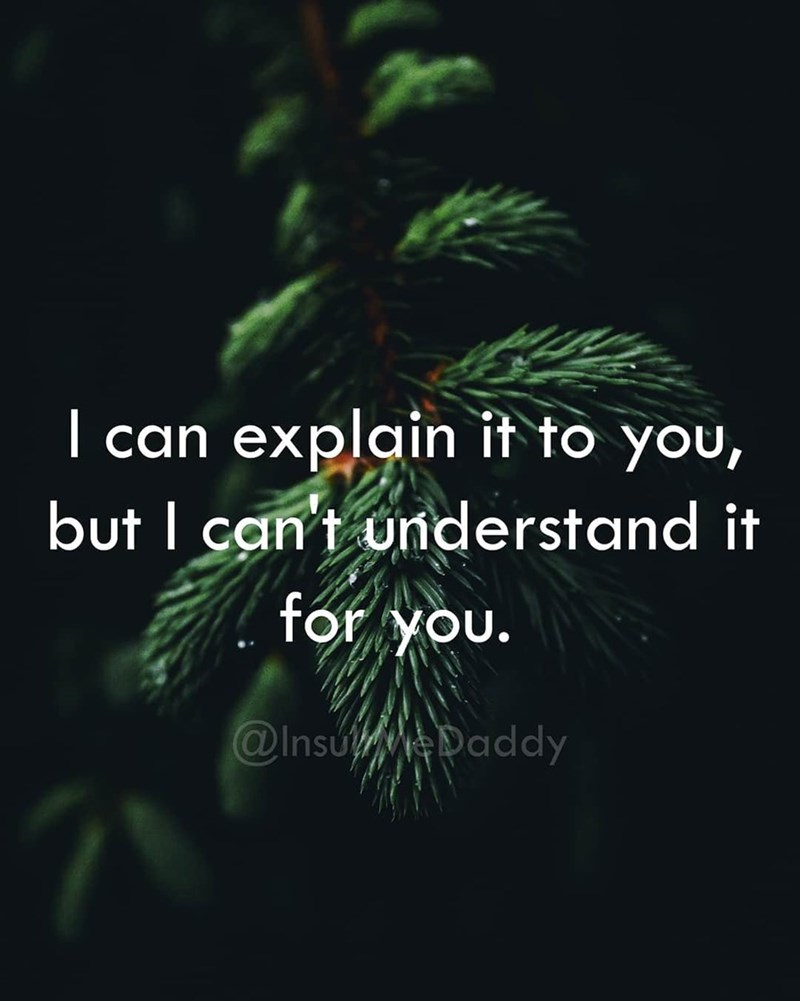 Text - I can explain it to you, but I can't understand for you. @Insu Daddy