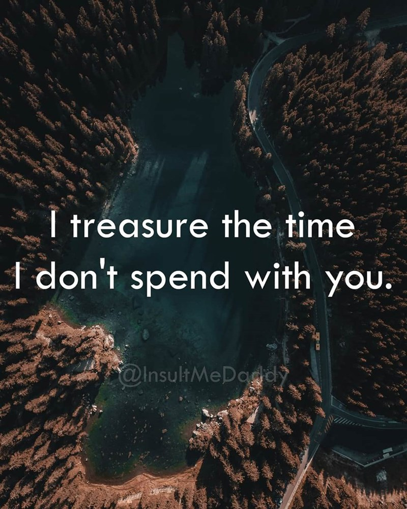 Text - I treasure the time don't spend with you. @InsultMeDaddy