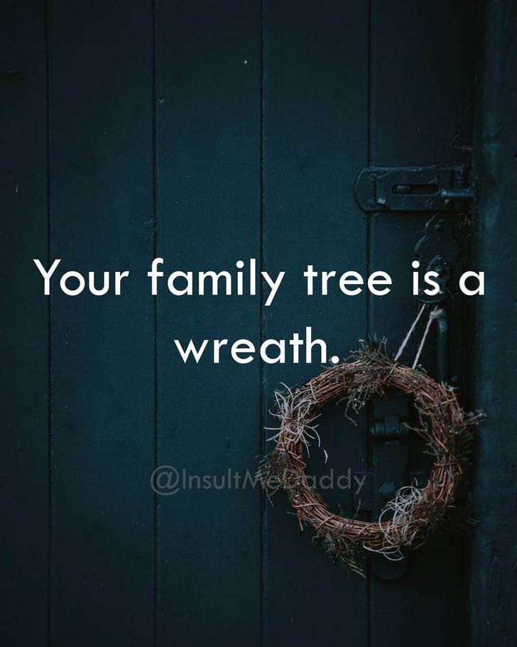 Text - Your family tree is a wreath @Insulteddy