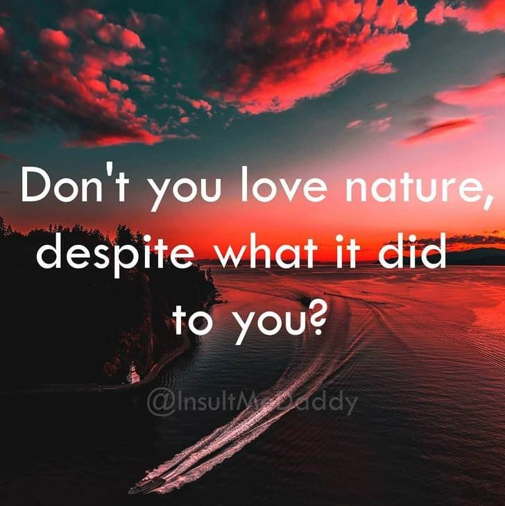 Sky - Don't you love nature, despite what it did to you? @InsultMddy