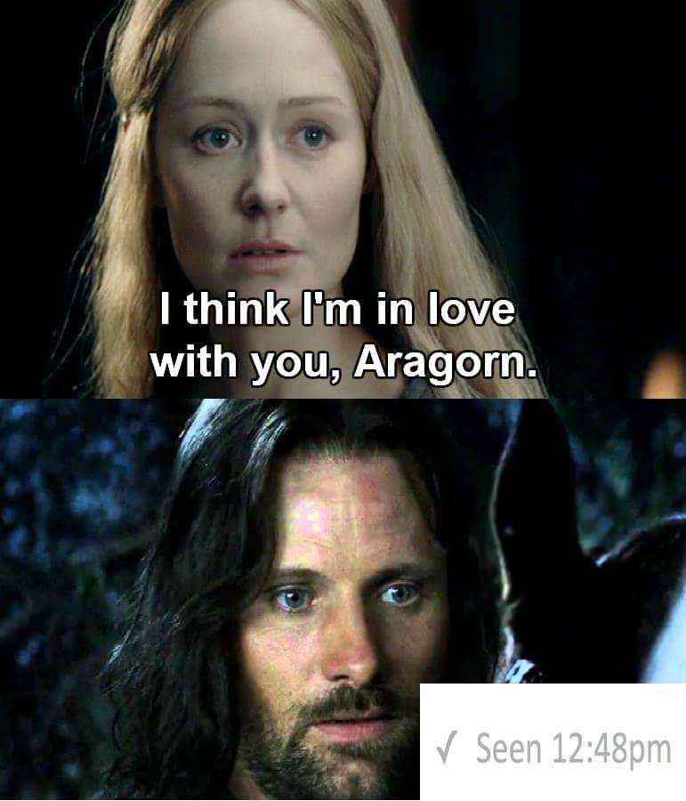 I love you Aragorn meme left on seen