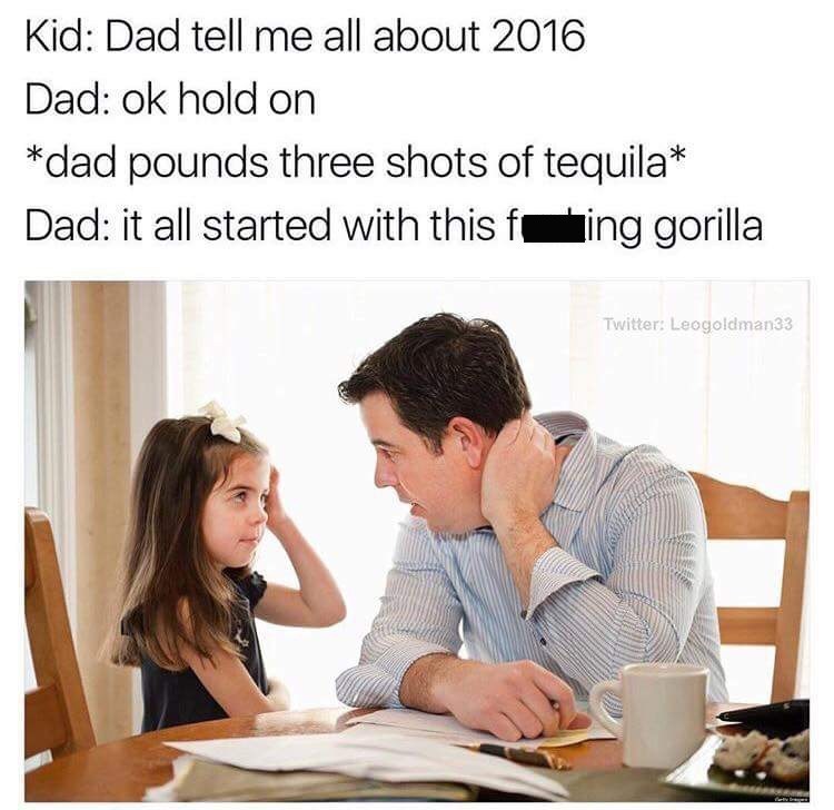 Text - Kid: Dad tell me all about 2016 Dad: ok hold on *dad pounds three shots of tequila* Dad: it all started with this fing gorilla Twitter: Leogoldman33 dety