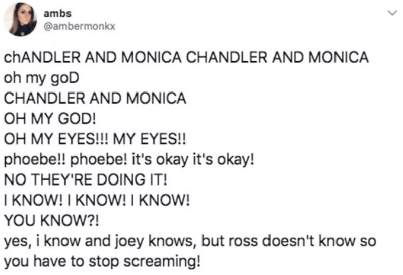 Text - ambs @ambermonkx CHANDLER AND MONICA CHANDLER AND MONICA oh my goD CHANDLER AND MONICA OH MY GOD! OH MY EYES!!! MY EYES!! phoebe!! phoebe! it's okay it's okay! NO THEY'RE DOING IT! I KNOW! I KNOW! I KNOW! YOU KNOW?! yes, i know and joey knows, but ross doesn't know so you have to stop screaming!