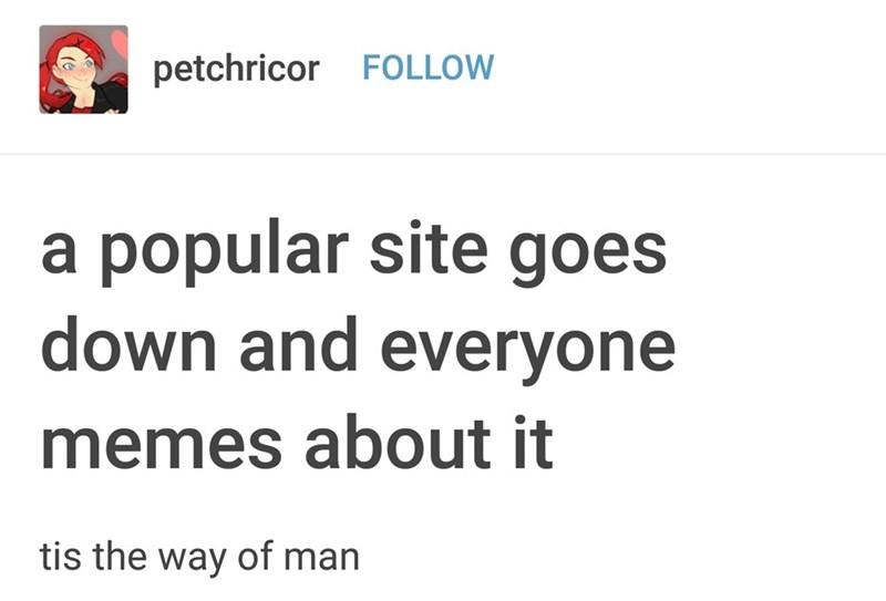 Text - petchricor FOLLOW a popular site goes down and everyone memes about it tis the way of man